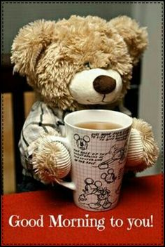 Teddy bear and coffee - perfect start to the day Tatty Teddy, My Teddy Bear, Cute Teddy Bears, Love Bear, Big Bear, Teddy Hermann, Teddy Bear Pictures, Bear Wallpaper, Bear Doll