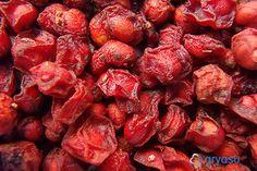 말린 오미자 먹는 방법 / 보관 방법 / 토종오미자