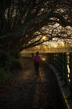 A London Winter Sunrise in Bishops Park by Stephanie Sadler, Little Observationist London Winter, Photo Walk, Morning Sunrise, Little Black Books, River Thames, How To Take Photos, Sidewalk, Park, City