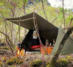 Does Camping World Allow Dogs Bushcraft Camping, Camping Survival, Outdoor Survival, Camping Hacks, Survival Life, Survival Gear, Camping World, Tent Camping, Outdoor Camping