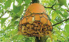 Insektenhotel bauen Diy And Crafts, Butterfly, Garden, Outdoor Decor, Beautiful, Bees, Hotels, Home Decor, Board