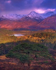 Glen Affric, Invernesshire, Scotland
