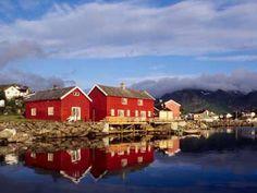 Typisch Norwegen - rote Fischerhäuser in Lofoten
