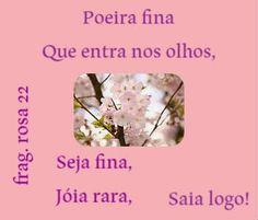 Meus Poemas  Minhas Reflexões (R.R.): N.73 Fragmento (n.22 poeira fina...)