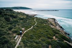 Beach hopping along the NSW South Coast | Blog - NSW National Parks