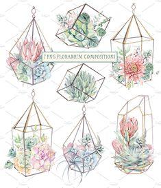 AMAZING SUCCULENTS Watercolor set by Lemaris on @creativemarket