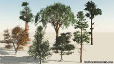 Trees 9 3d model free