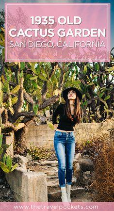 Historic cactus garden located at Balboa Park in San Diego, California, USA.