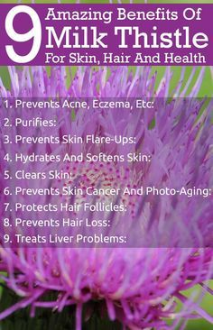 9 Amazing Benefits Of Milk Thistle For Skin, Hair And Health http://www.medicinal-botanicals.com/