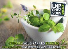 SOIGNEZ VOUS PAR LES PLANTES - DEMANDEZ CONSEIL GRATUITEMENT SUR WWW.LNPCHEZVOUS.COM
