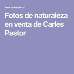 Fotos de naturaleza en venta de Carles Pastor