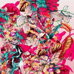 BOTANICA Standart License : 50$ Online Prints & Patterns #womens #kidswear #fashion #fashionable #mans #pattern #print #design #moda #trend #newyork #london #fashionweek #premiervision #istanbul #style #moscow #flowers #wepattern #surfacedesign, #flowers