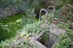 Abandoned Pool Located in: London Ontario