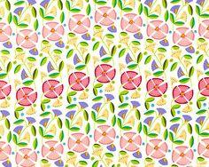 Enchanted - Morning Glory Blossoms - Petal Pink