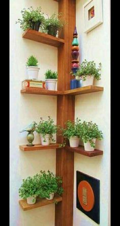 7 Strong Clever Tips: Floating Shelf Over Tv Corner Shelves floating shelves with lights rustic.Floating Shelf Over Tv Corner Shelves. Farmhouse Diy, Corner Shelves, Diy Shelves, Floating, Decorating Shelves, Corner Wall, Floating Shelves Diy, Plant Vase, Floating Shelf Decor