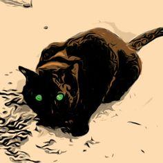 Hurtfoot Cat