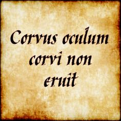 """Corvus Oculum Corvi Non Eruit - """"A raven will not pick out the eye of another raven"""""""