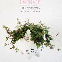 How-To: Plastic Bottle Cat Planter - Craftzine.com blog