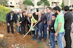 زراعة 1500 شجرة حرجية ومثمرة في حملات تشجير لمؤسسة جهاد البناء