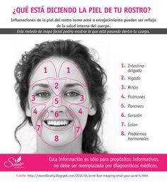 Infórmate aquí qué parte de las zonas de la cara son el reflejo de una parte de…