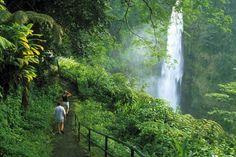 Hawaii big island akaka falls