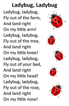 Our version is Ladybird, ladybird, fly away home, Your house is on fire your children all gone... there are more lines but can't remember them off hand