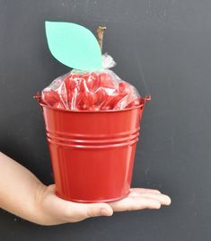 Want to wow teacher and score some extra credit points at the beginning of the school year? Then this DIY apple pail teacher gift is perfect for you! I recently shared the fun and easy tutorial for turning a plain galvanized pail into an apple pail gift filled with cherry sour treats for getting teacher …
