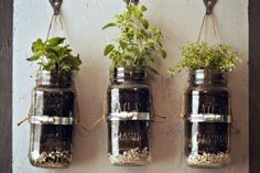 Garden & Landscaping, Astounding Garden Ideas For Small Spaces Design Ideas With Bottles And Rope And Iron Binding: Design A Small Place To Grow A Variety Of Plants That Easily Treated