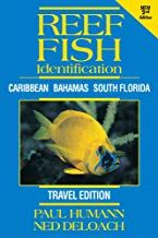 On this page get pricing details and other important information on the Reef Fish Identification Travel Travel Books Media along with additional buying options. Field Guide, Florida Travel, South Florida, Reading Online, Audio Books, Underwater, Caribbean, Books To Read, Ebooks