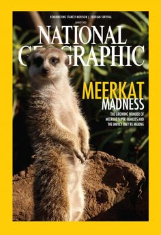 Nat Geo Magazine Cover with a meerkat feature! Does it look like the real thing ??