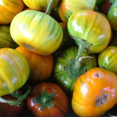 Heirloom tomatoes from Crum's Farm in Bonner Springs, KS. We do our best to use only local and organic produce. Bonner Springs, Heirloom Tomatoes, Foodies, Restaurant, Organic, Vegetables, Diner Restaurant, Vegetable Recipes, Restaurants