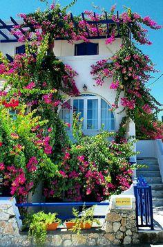 Beautiful Gardens, Beautiful Homes, Wonderful Places, Beautiful Places, Santorini Greece, Santorini Island, Greece Travel, Greek Islands, Curb Appeal