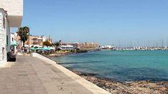 fuerteventura CORRALEJO | Fuerteventura 2010 - Spaziergang nach Corralejo - Elke und Joachims ...