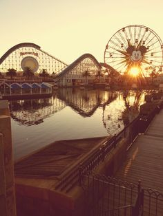 Roller coaster by the water water disney park fun sun amusement mouse ferris wheel mickey
