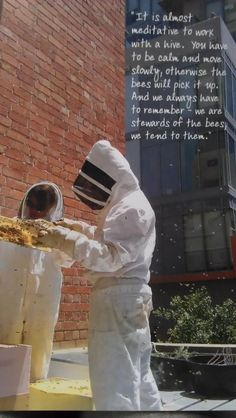 Supporting rooftop bee hives in Melbourne  http://www.rooftophoney.com.au/