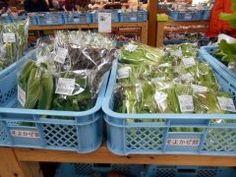 道の駅大和そよ風館 R沿いにあるんだけどもうスーパーマーケット真っ青なほどの地産特産品のオンパレード数も多ければ新鮮で安い これは土産物でなく実用品だね野菜なんか円均一で嬉しすぎだよ()v  #道の駅 #野菜 #大和そよかぜ館 #土産物 #円均一 #佐賀市 tags[佐賀県]