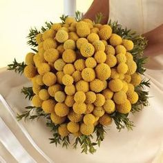 Ever popular Billy Balls( Craspedia) bouquet Fall Wedding Bouquets, Fall Wedding Flowers, Yellow Wedding, Bride Bouquets, Flower Bouquet Wedding, Floral Wedding, Boquet, Bridesmaid Bouquets, Flower Bouquets