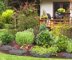 A few small trees dotted around the edge of your deck create a soft, leafy curtain without taking up too much space in the yard. Add drama and interest by selecting different types of trees. Small maples (such as Amur maple), for example, provide bold fall colors, while crabapples offer springtime blooms.