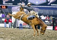 Photo: Kelly Roderick / For The Lantern      World's Toughest Rodeo takes Columbus for a wild ride with barrel racing, bull riding, backflip