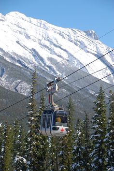Banff Gondola to Sulphur Mountain