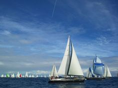 ARC Atlantic Rally for Cruisers the largest transoceanic sailing rally in the world. Key dates in ARC 2014: Sunday 9, 16 and 23 of November. #Gran #Canaria. Spain.