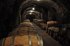 Los #vinos Tokays.  La región de Tokaj se encuentra en el nordeste de Hungría y en ella se producen algunos de los vinos dulces mejor valorados del mundo.
