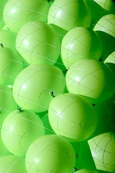 chasingrainbowsforever:  Helium-filled Lime Green Balloons