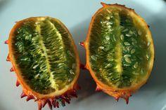 Dzisiaj drugi artykuł z serii ciekawostki 10 najdziwniejszych owoców, ostatnio były warzywa. Tym razem trafiło na owoc. Kiwano Odmiana ogórka pochodząca z Afryki, rośnie w warunkach niezwykle gorących nawet 20 cm. dziennie. W smaku zbliżony jest do kiwi, melona, ogórka, zaś w zapachu przypomina banana. Spożywa się go na surowo samego lub dodając do sałatek …