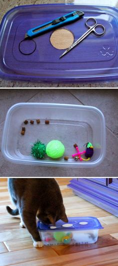 Marvelous 25 DIY Cat Toys You Can Make for Free https://meowlogy.com/2017/10/18/25-diy-cat-toys-can-make-free/ Your pets aren't spraying so as to force you to get angry.