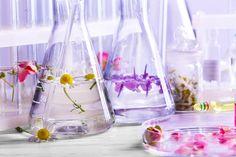 Cum îți Faci Singură Un Parfum. Parts Of A Plant, Feeling Sick, Sliding Glass Door, Active Ingredient, Glass Vase, Essential Oils, Deodorant, Face, How To Make