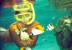 snorkelen - Google zoeken