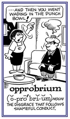 「opprobrium」