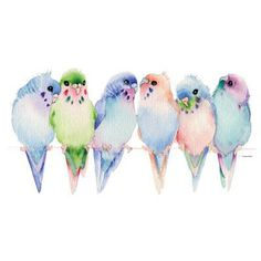 Budgies Parakeets by firelandsteeshirts | not anything remotely resembling any colors they can come in but I still love this.