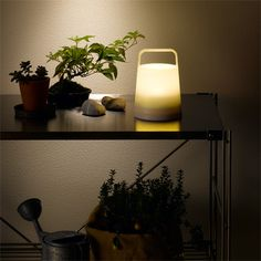 LED light, portable : MUJI Desk Lamp, Table Lamp, Facade Design, Muji, Flower Vases, Flowers, Stationary, Household, Lights
